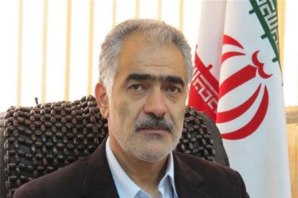 """گل محمدی به عنوان عضو """"شورای راهبری توسعه مدیریت"""" منصوب شد"""